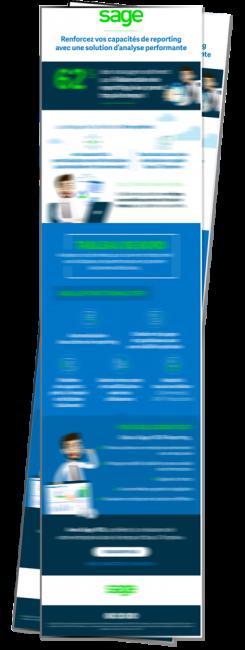 Apercu Infographie Sage BI Reporting