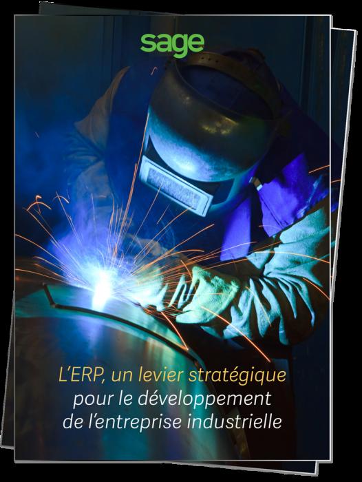 vignette-l-erp-pour-l-entreprise-industrielle